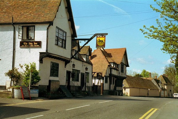 The Dog Inn 1